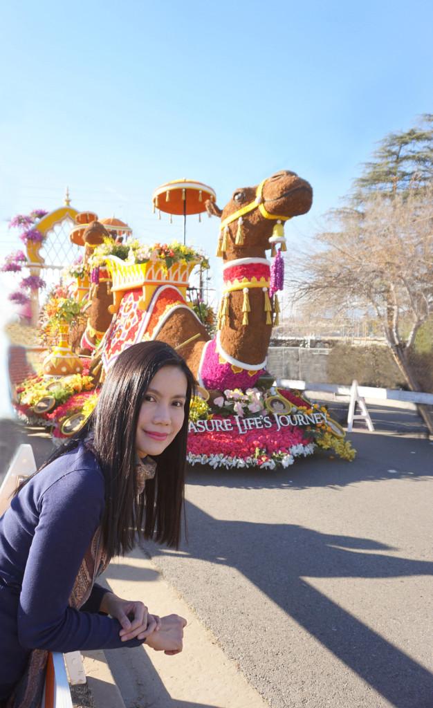 Tournament of Roses Rose Parade Pasadena California Camel